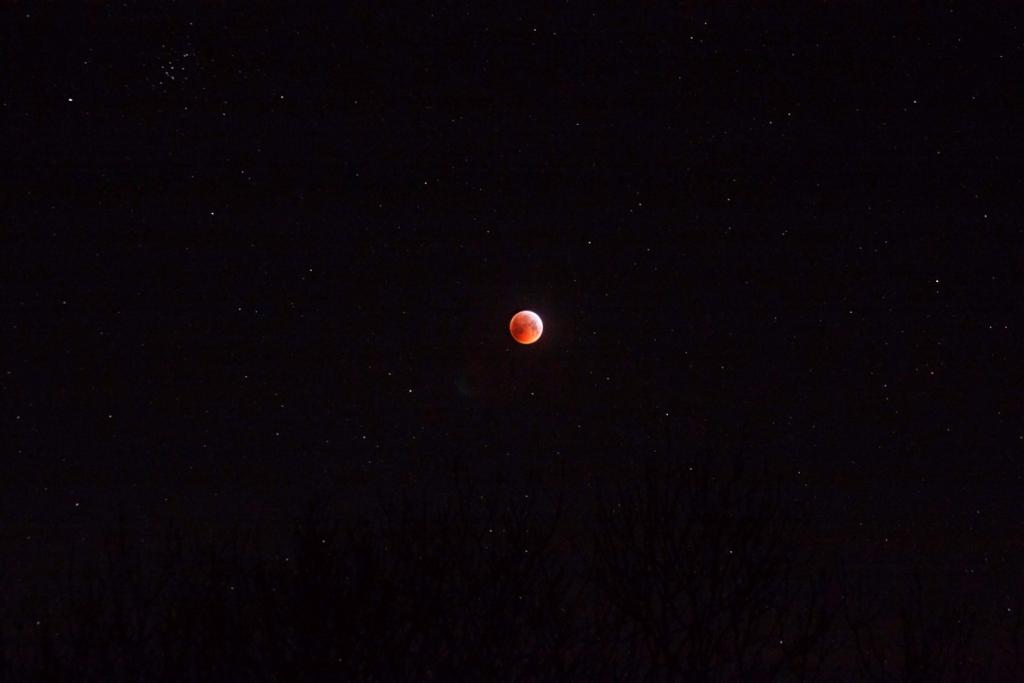 Lunar Eclipse & Beehive Cluster