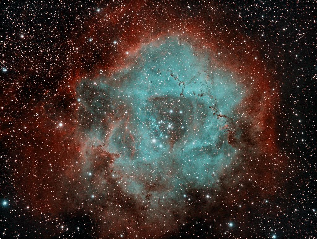 Rosette Nebula in HSO (Red-Cyan Treatment)